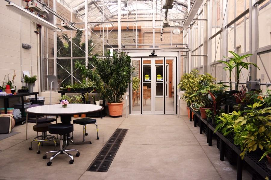 Conservatory 3